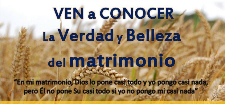 Boletin Aleluya 24 febrero 2019