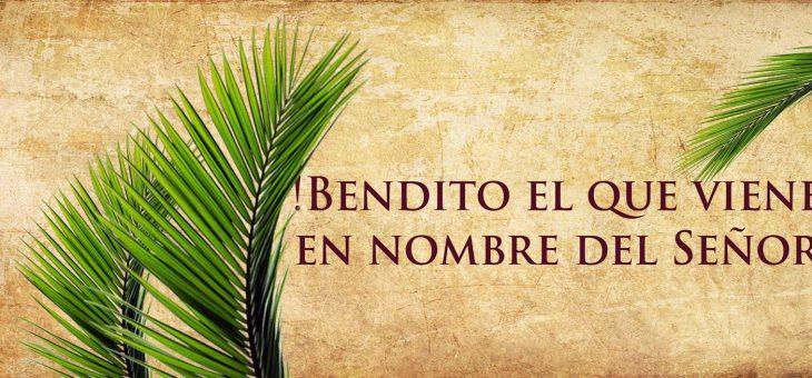 Domingo de Ramos 5-abril-2020 #QuedateEnCasa